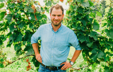 Weingut Klenert