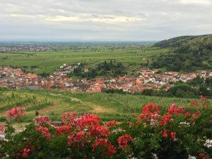 Batin Mumcu/ Berliner Weinpilot