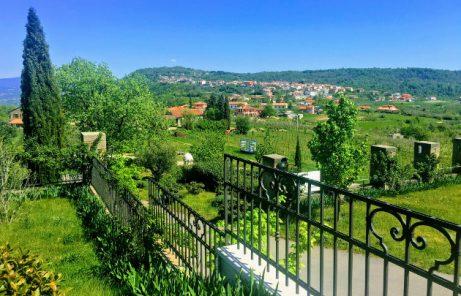 Winecountry Slovenia
